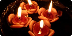 Rose candles on water
