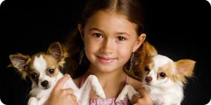 Little girl carrying two chihuahuas