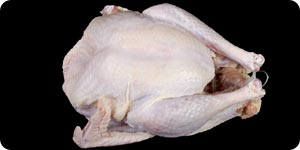 Image of uncooked chicken