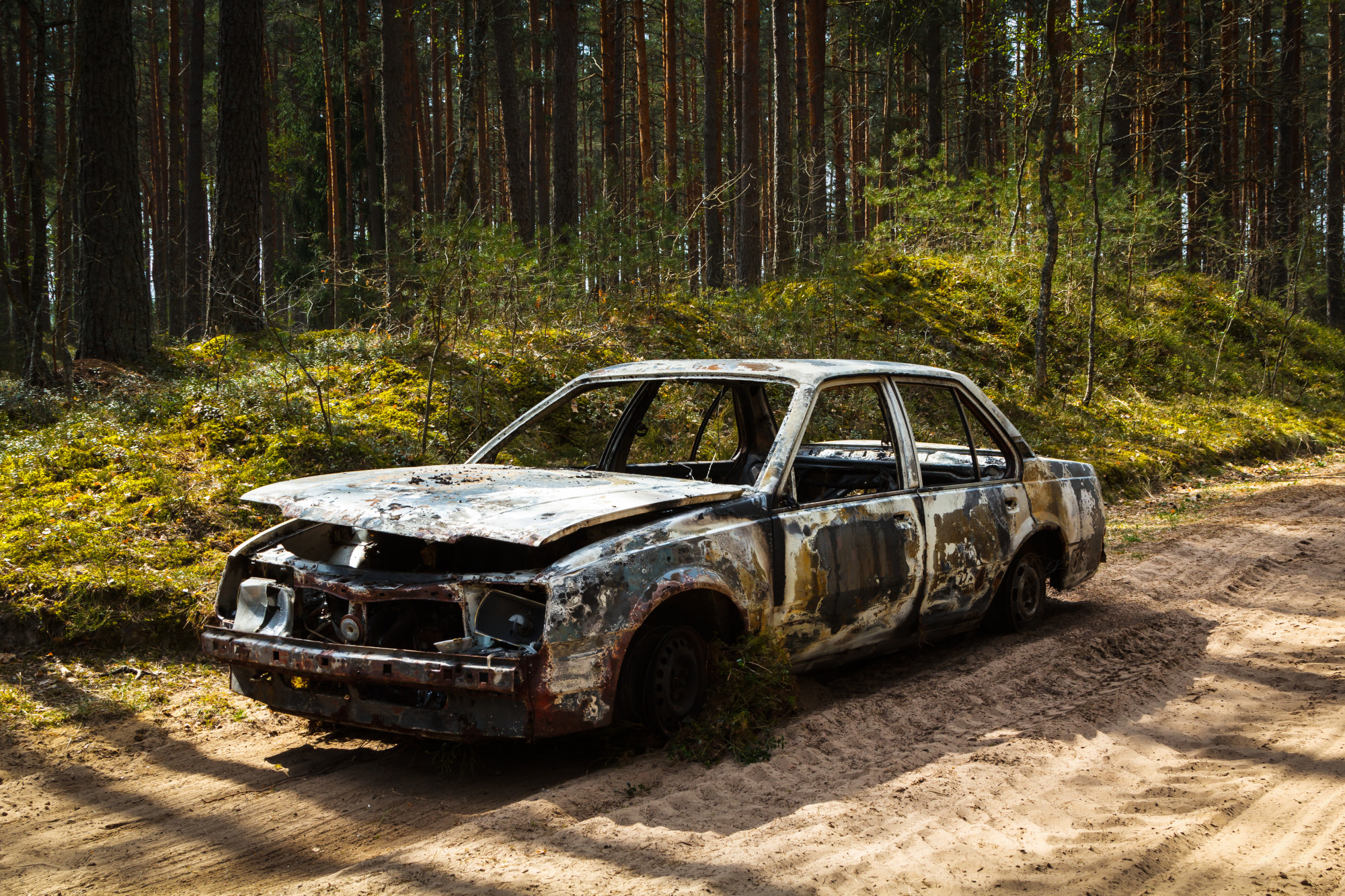 rusty car abandoned in forest