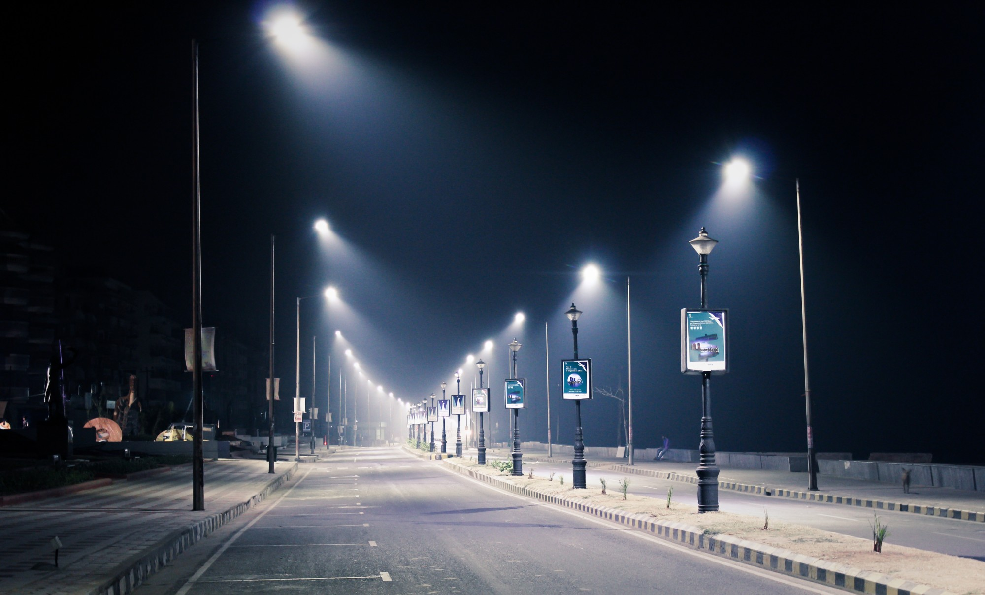 streetlights turned on at night with lamp posts
