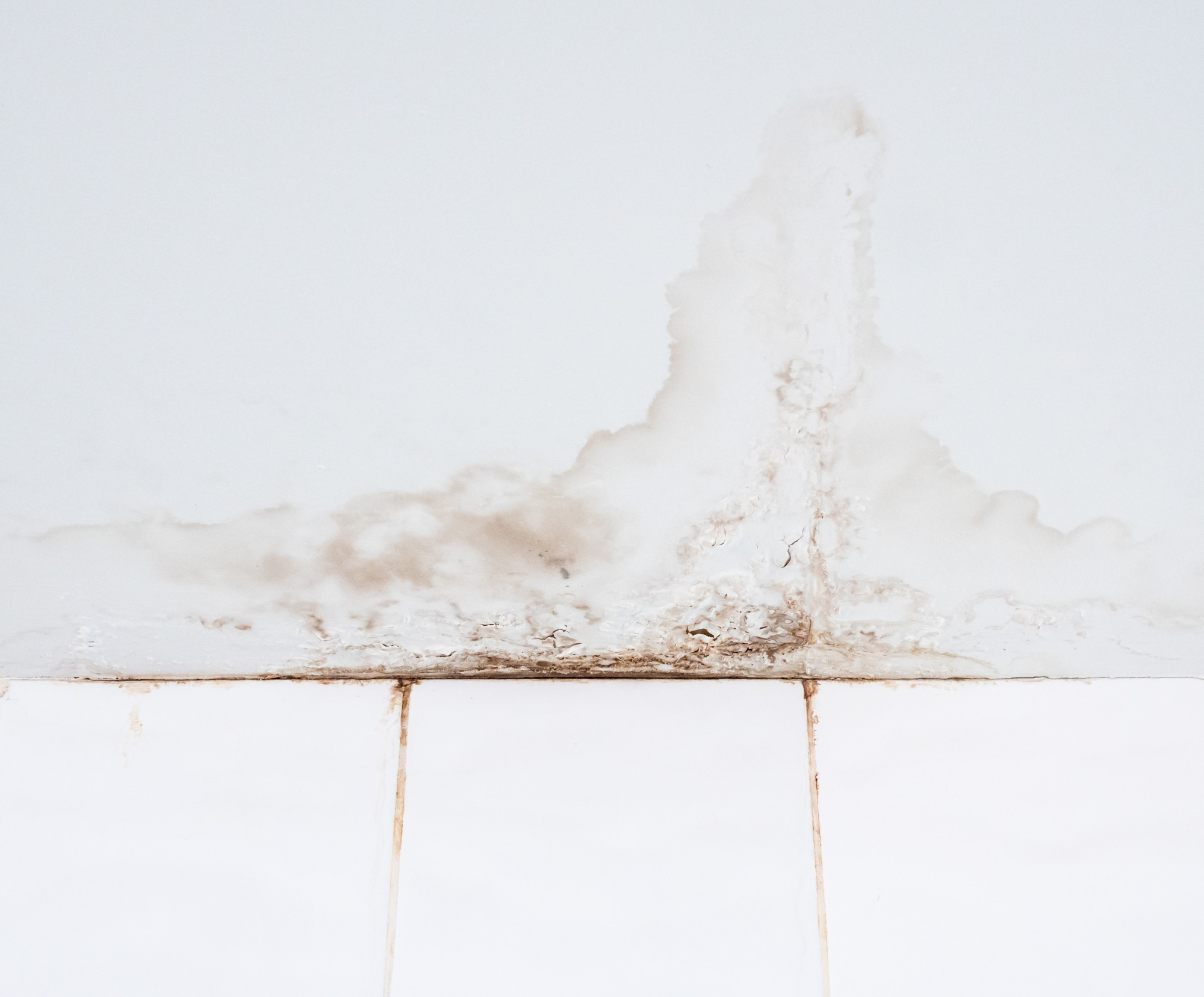 water stain on drywall ceiling